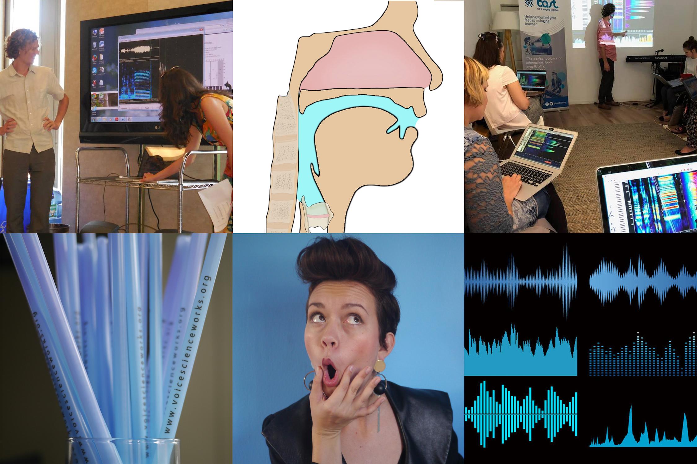 Voicescienceworks